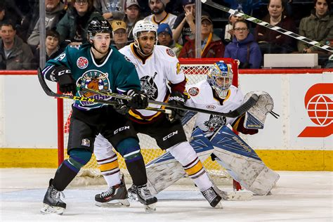 CHICAGO WOLVES WEEKLY PRESS NOTES, FEB