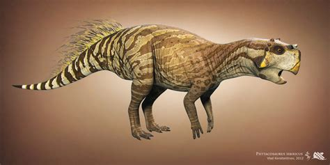 Psittacosaurus - Facts and Pictures