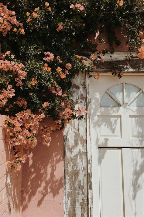 Aesthetic flowers Pinterest // carriefiter // 90s fashion